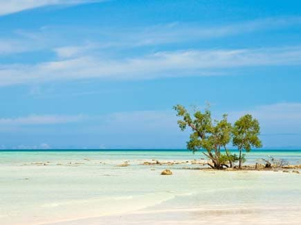 Andaman with Havelock Special (SHAN11) Tour Package