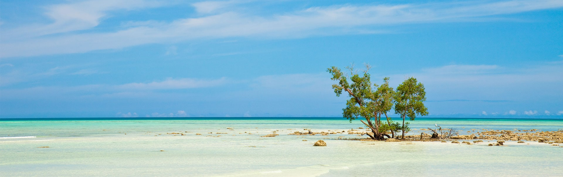 Andaman with Havelock Honeymoon Special (SHAN9) Banner