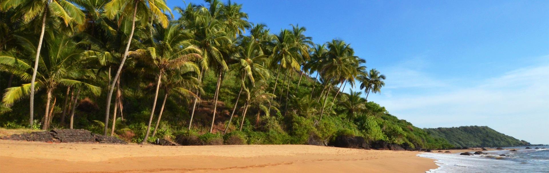 Goa with Phoenix Park Inn Resort (SHGA8) Banner