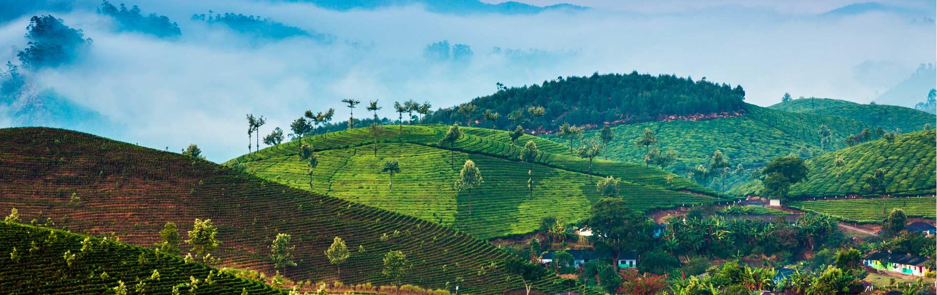 Kerala in a Week (SHKL12) Banner