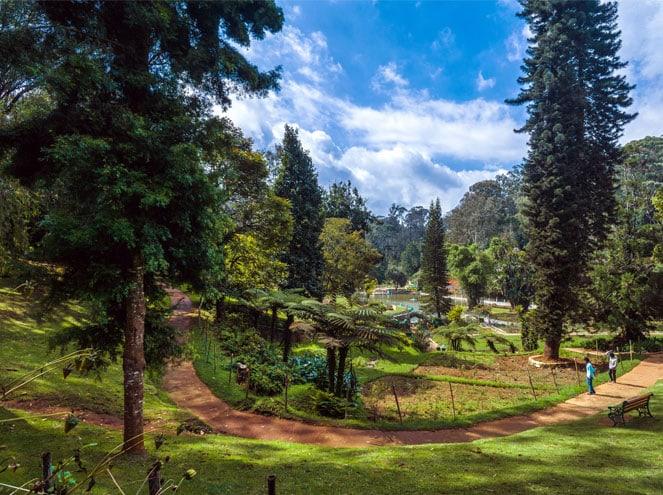 Must Visit Garden