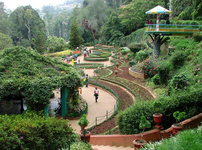 Day trip to Coonoor