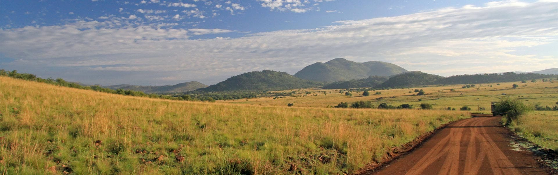 South Africa with Pilanesberg (SHSA1) Banner