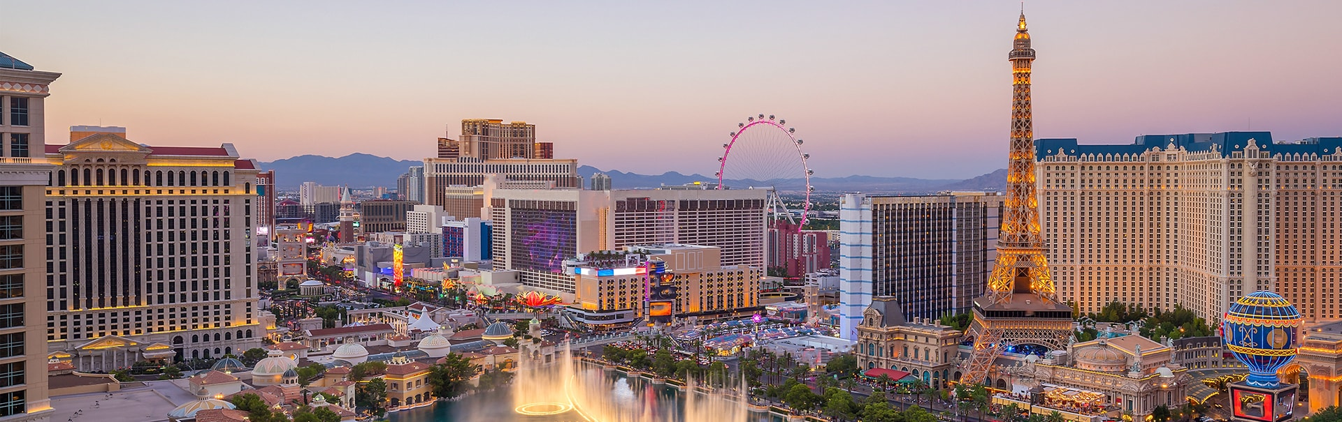 Las Vegas Anniversary Special (SHUS27) Banner