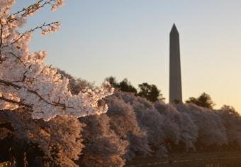 America Customized Holidays Tour Highlights