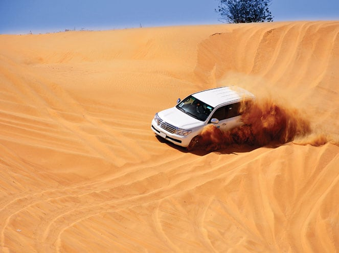 Sand Dunes Safari