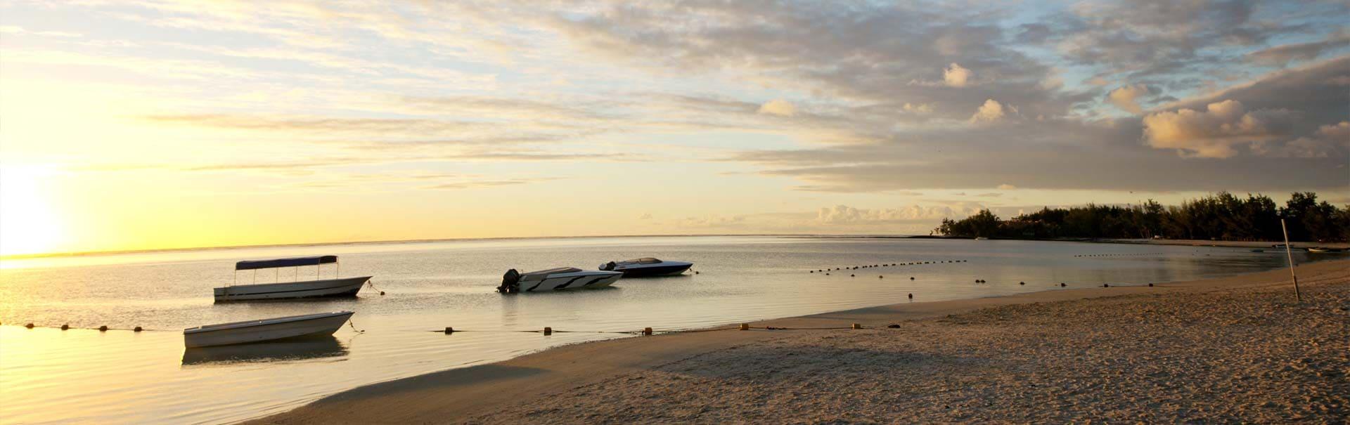 Mauritius with Casurina (SHMU2) Banner