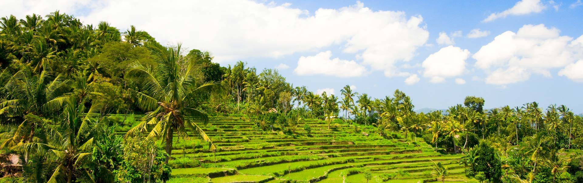 Romantic Bali with Ubud Stay (SHIB2) Banner