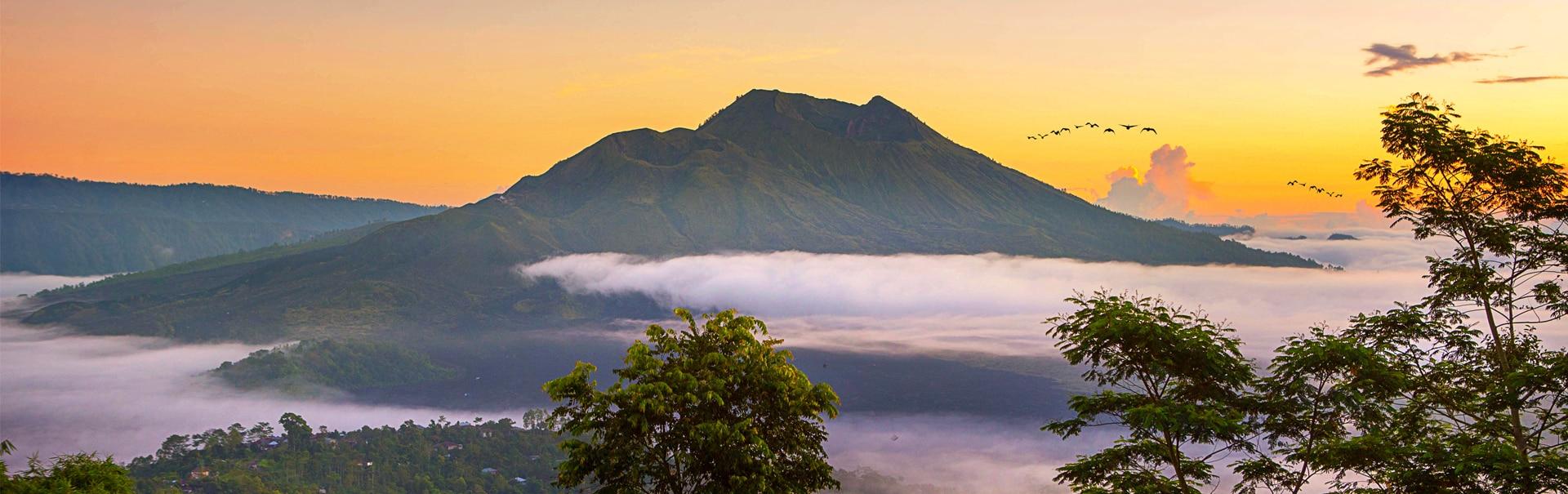 Romantic Bali (SHIB3) Banner