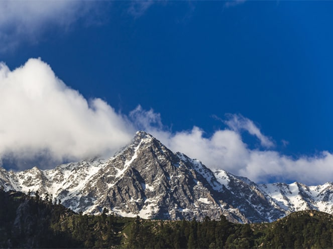 Manali Magic Tour Package Experience 2
