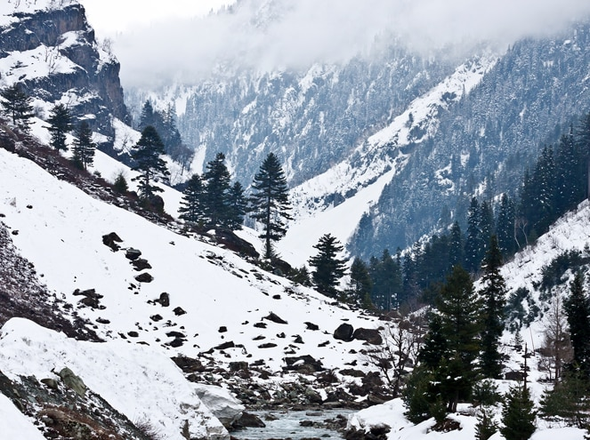Jammu and Kashmir Women's Special Sightseeing 3