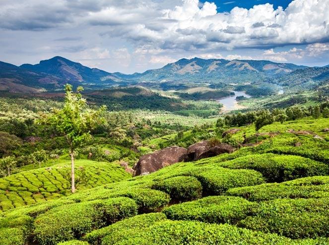 Kerala Festival Tours Sightseeing 2