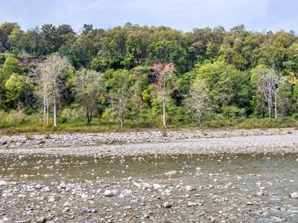 Nainital Mussoorie Corbett Women's Special Travel Highlights 3