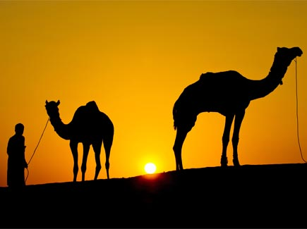 Women's Special Rajasthan Mewad (RJWA) Tour Package