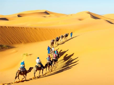 Rajasthan Women's Special Travel Highlights