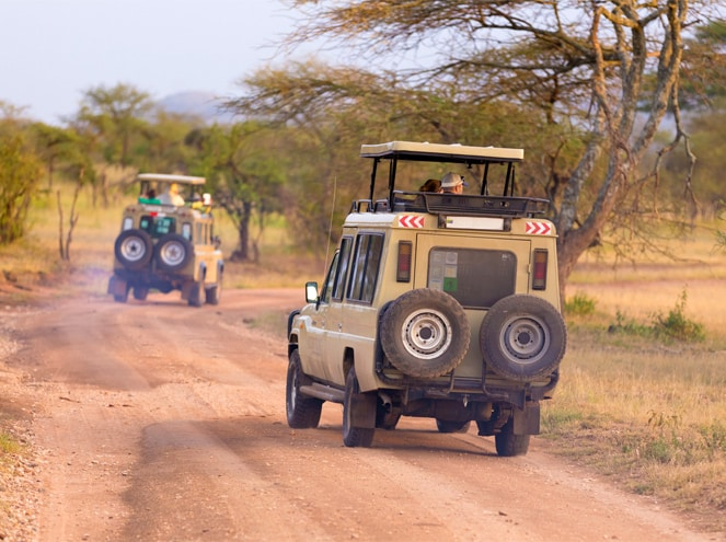 Africa Tours in 1.25 Lakhs Sightseeing 3