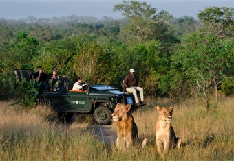 Africa Tours in 1.25 Lakhs Tour Highlights