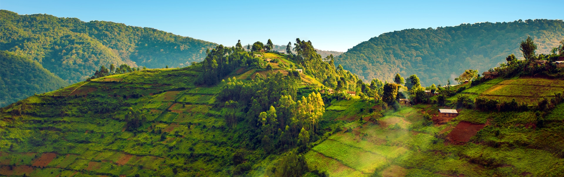 Uganda Rwanda Kenya with Gorilla Trekking (AFRK) Banner