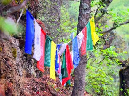 Women's Special Bhutan - Ifly (BTWG(I)) Tour Package