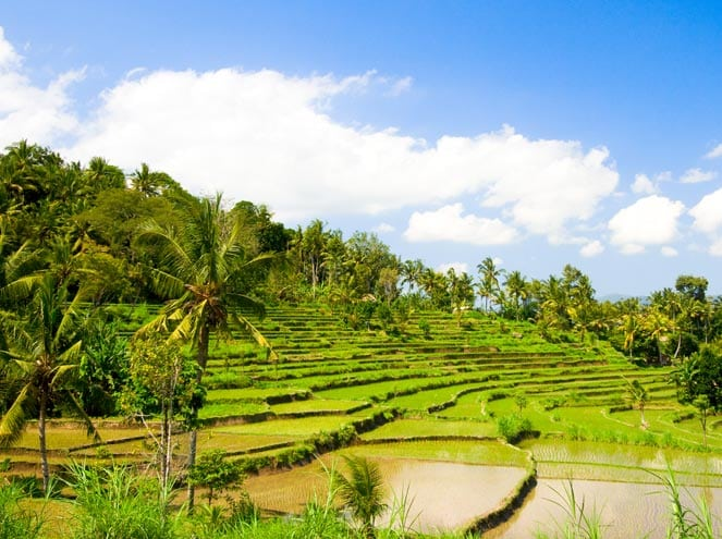 South East Asia Seniors Special Sightseeing 3