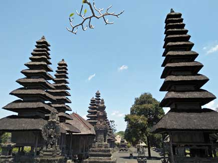 Seniors' Special Bali (ASZI) Tour Package