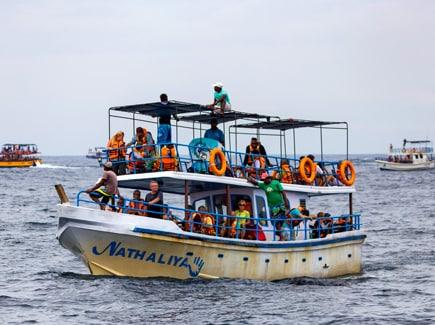 Sri Lanka Family Travel Highlights 1