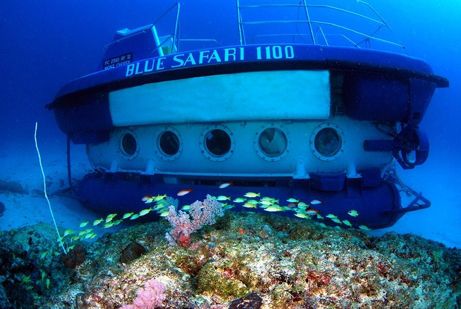 Submarine Cruise