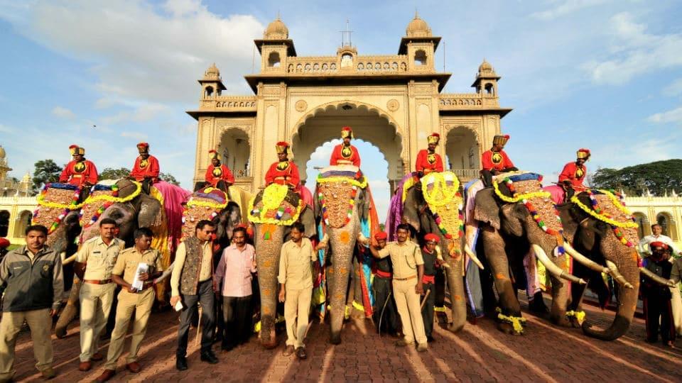 Mysore's 138 years old Mela