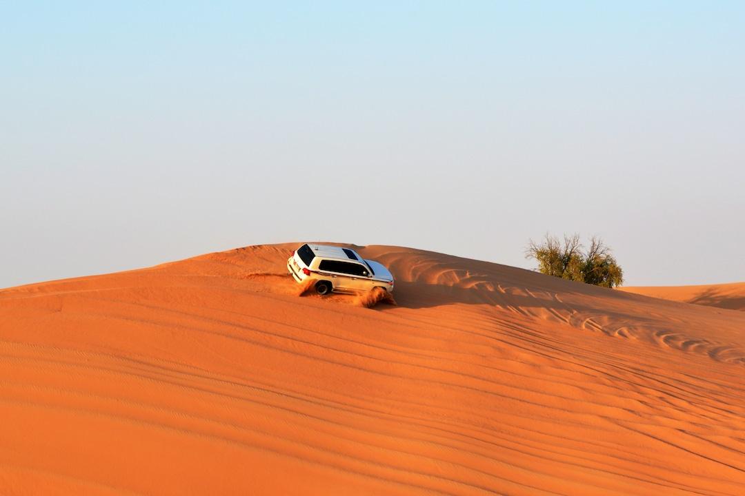 The Developed Desert of Dubai
