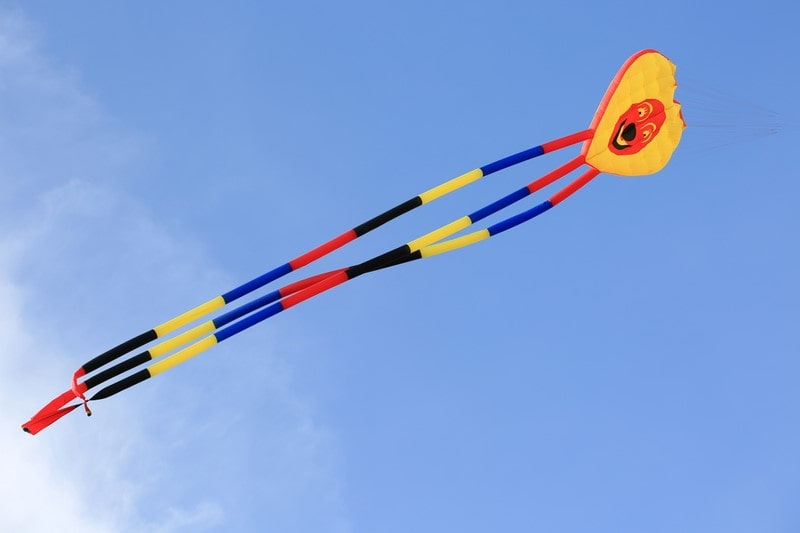 Experience the Best Kite Flying
