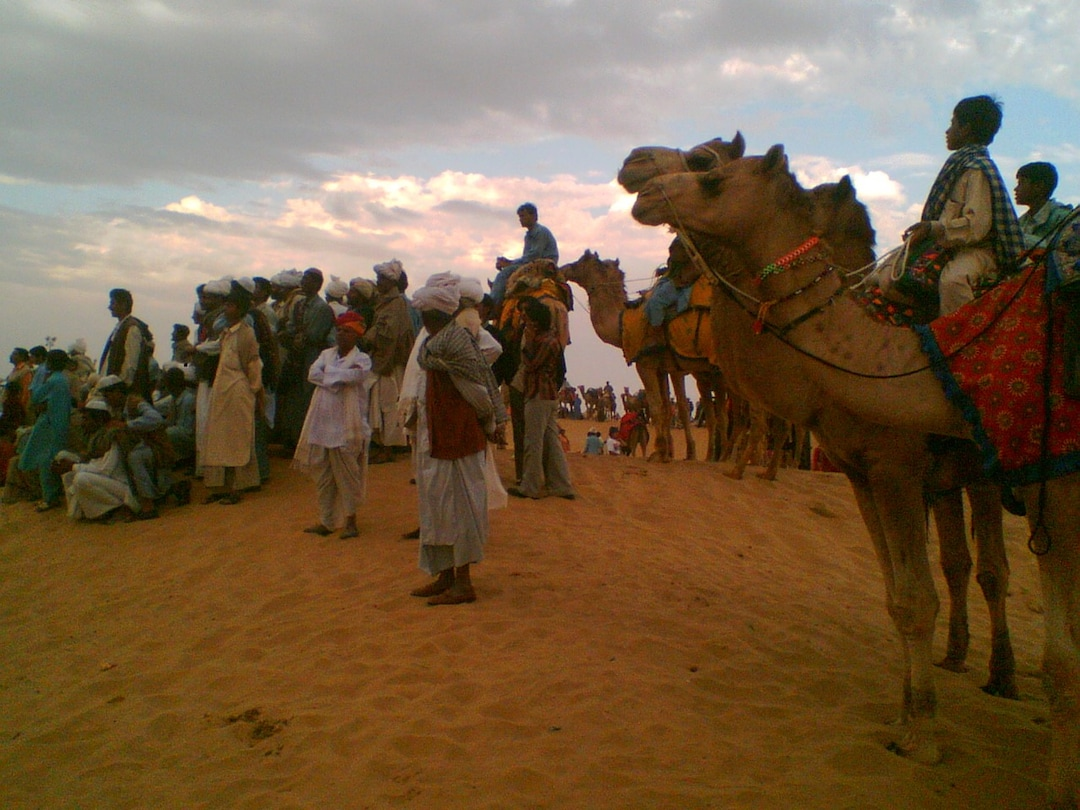 Jaisalmer Desert Festival: Watch Interesting Activities Unfold in the Desert