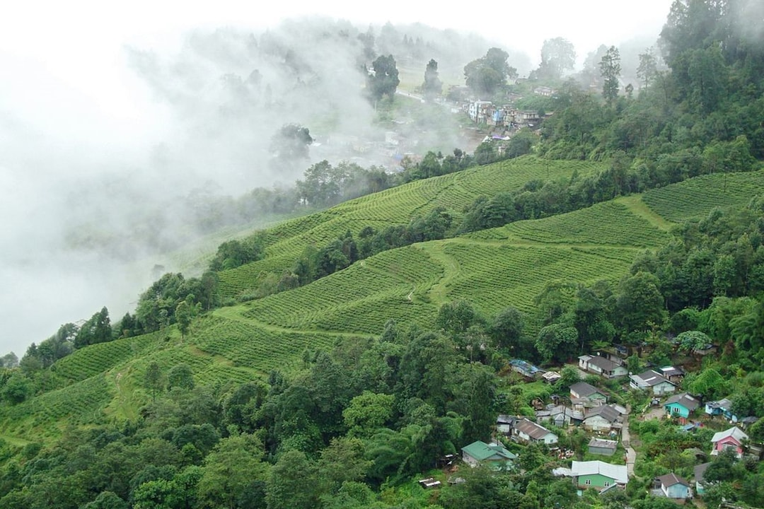 12 Places To Visit In Darjeeling To Explore The Himalayas