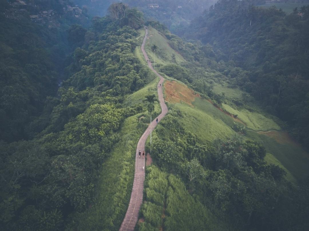 Bali Pass Trek