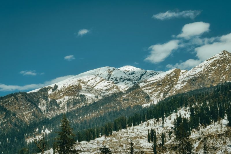 5 Star Hotels In Manali For Newlyweds