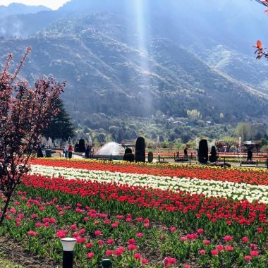 6 Famous Festivals Celebrated In Jammu And Kashmir